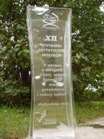 Nagroda: II Miejsce w kat. Chóry, zespoły śpiewacze oraz gawędziarze