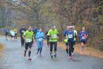 Foto: Biegacze na trasie I RST Półmaratonu Świdnickiego